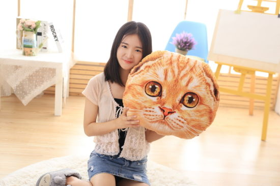 Home Pillow Cushion Bolster Plush Cat Toy with Catnip 40cm-Orange