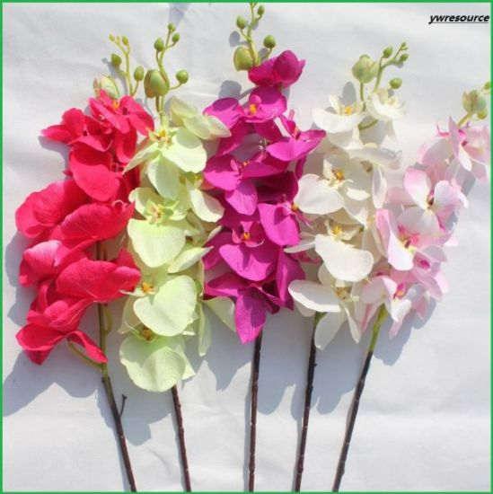 China Lifelike Silk Artificial Flowers Fake Orchid For Wedding Home