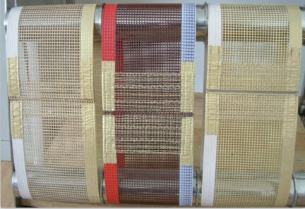 China Supplier High Temperature Resistance PTFE Coated Fiberglass Mesh Dryer Belt pictures & photos