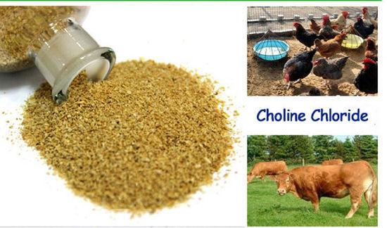 Loe Price Choline Chloride Supplement