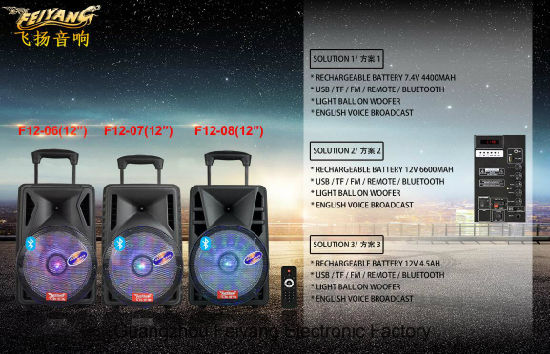12 Inch Stage Lithium Battery Speaker with Bluetooth Microphone