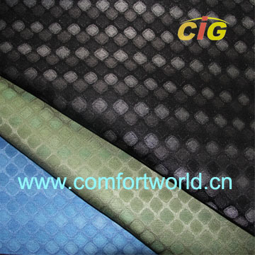 Shuttle Jacquard Fabric pictures & photos