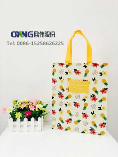 Laminated Bags Making Machine pictures & photos