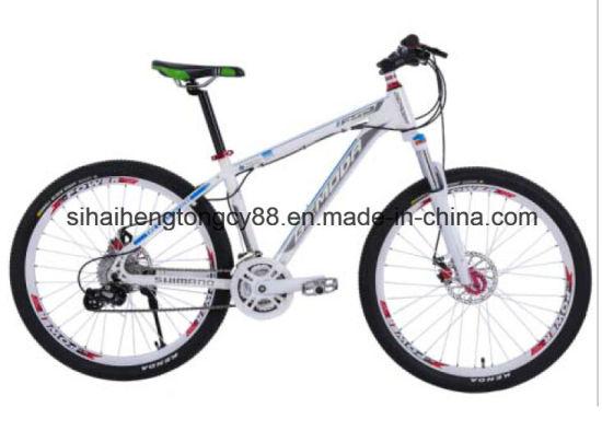 26in Alloy Mountain Bike for Boys