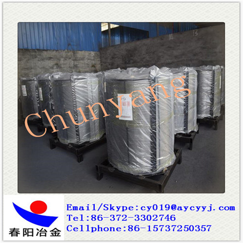 Factory Produce Silicon Calcium Cored Wire Eye to Sky Coil pictures & photos