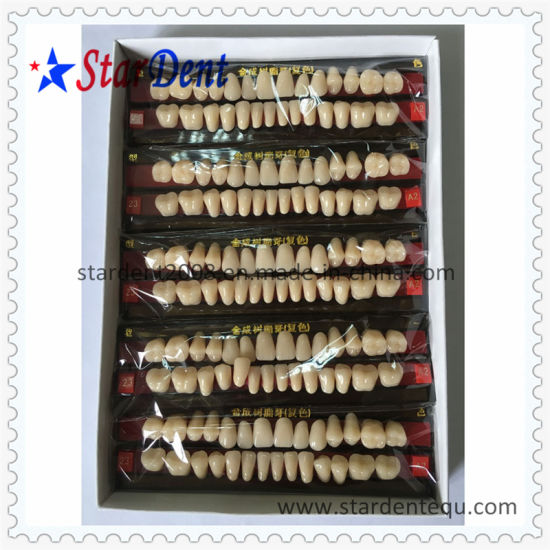 Two Layers Synthetic Resin Teeth of Dental Material pictures & photos