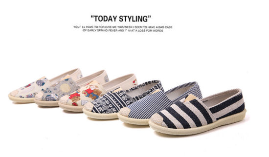 Fabric Shoes/Casual Shoes/Women Shoes