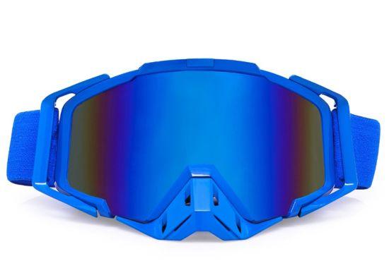 Ski Double Lens Anti-Fog Skiing Glasses Snow Sports Goggles