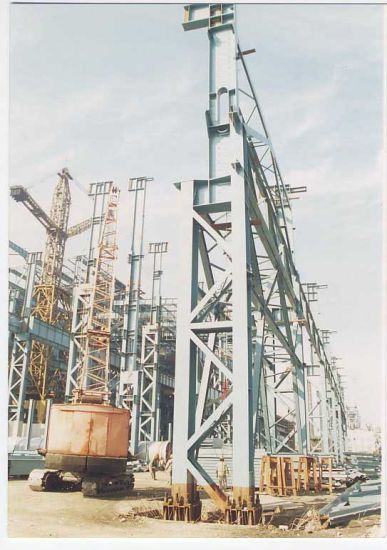 Steel Structure Building for Customized (SS-545)