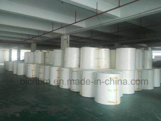 Polyester Long Fiber Needle Punched Nonwoven Fabric