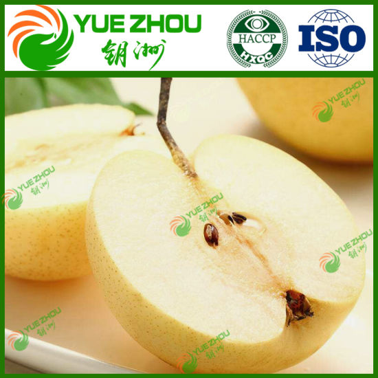 Supply Fresh Fruits China Fresh Sweet Pear Golden Pear for Sale