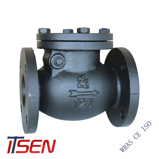 API/JIS/DIN Cast Iron Gg25/Ggg40/Ggg50 Non-Return Swing Check Valve