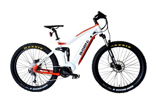 27.5 Inch Customized Suspension Electric Bicycle Fat Tire Ebike MTB