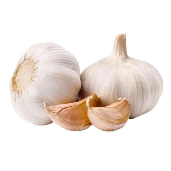 Hot Sale Fresh Garlic/Pure White Garlic/White Garlic/Chinese White Garlic with Global Gap