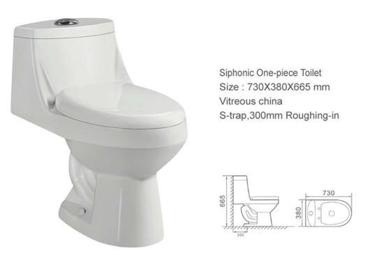 Siphonic S-Trap One Piece Toilet