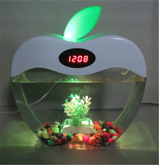 KW2015A Creative design hot sale mini acrylic fish tank pictures & photos