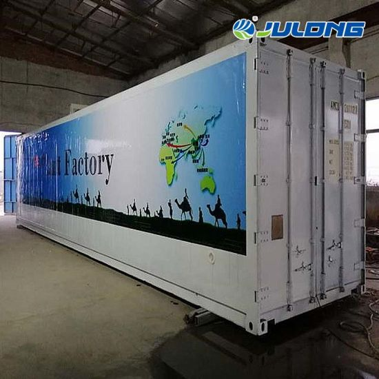 Julong Agriculture Container Greenhouse Vertical Planting Factory for Vegetables/Flowers