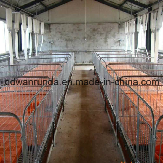 Pig Breeding Farms for Pig Rearing Equipment and for Anmial Feedr Use pictures & photos