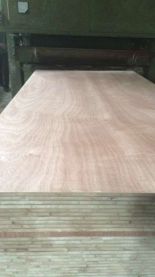 Paulownia Blockboard Sale in Mexico Market 18mm pictures & photos