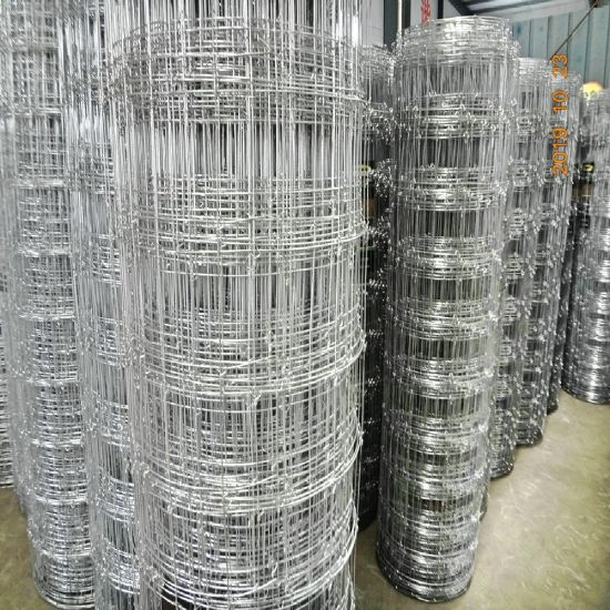 High Tension Steel Wire Fixed Knot Camel Fence / Tight Lock Fence/ Elk Fence