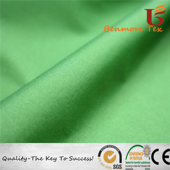 China 20d Nylon Stretch Taffeta/Ultrathin Nylon Fabric - China Nylon