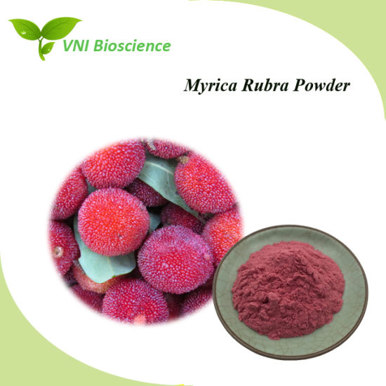 ISO Certified Red Bayberry Powder/Arbutus Powder for Anti-Cancer pictures & photos