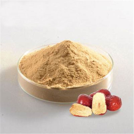100% Natural Chinese Jujube Fruit Powder/Red Dates Concentrate Juice Powder Price