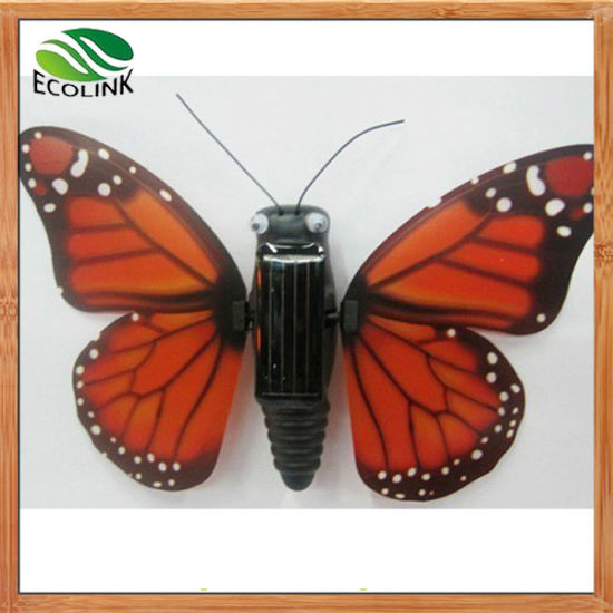 Solar Butterfly Solar Educational Toys