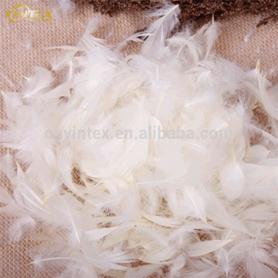 Duck Feather Sofa Cushion Filling