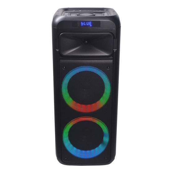 Temeisheng 2020 Private Dual 6 Inch Karaoke Party Speaker Box