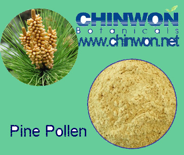78. Healthy Food Disruption Powder Pine Pollen