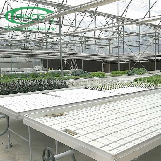 Micro Greenhouse Ebb and Flow movable bench system for hydroponics farm