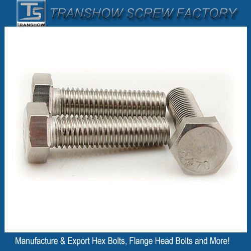 M3-M56 DIN933 DIN931 DIN558 DIN601 DIN960 Standard Hex Bolts pictures & photos