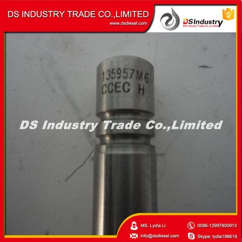 High Quality Dcec Nt855 Engine Spare Parts Intake Valve 135957 pictures & photos
