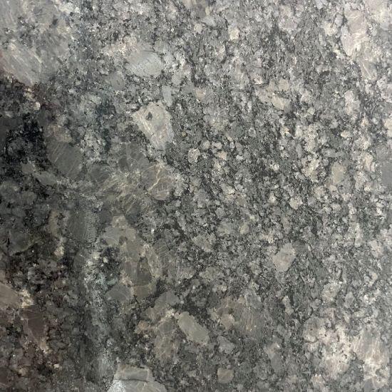 Wholesale Black Ice Flower Natural Granite Big Slabs