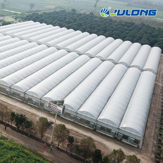 Smart Farm Agriculture Vertical Planting Vegetables Multi Span Plastic Film Polytunnel Greenhouses