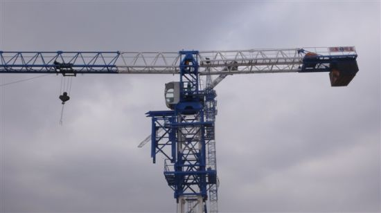 Flattop Tower Crane with Competitive Price