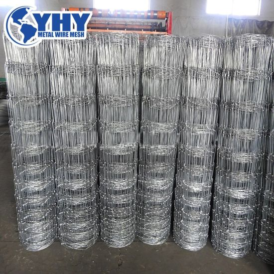 Hot Dipped Galvanized Fixed Knot and Hinge Joint Fence
