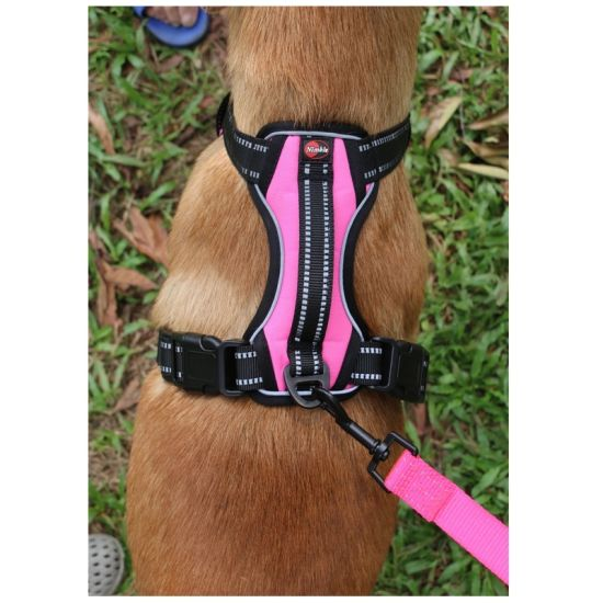 2021 Fashionable High Quality ID Design Factory Wholesale Dog Wire Harness/The Most Popular Dog Leash/The Most Popular Leash for Pets