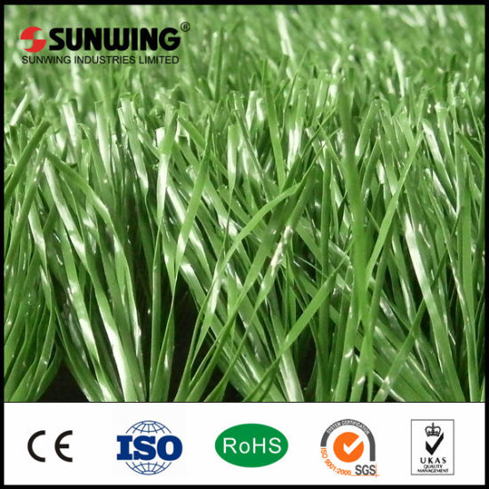 Sports Good Professional Cheaper PE Artificial Grass for Soccer pictures & photos