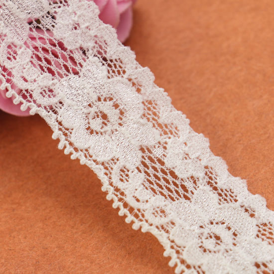 Europe Style Elegant White Flower Border Embroidery Lace pictures & photos