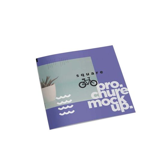 Colorful Brand Paper Wholesale Clothing Catalog Brochure Printing