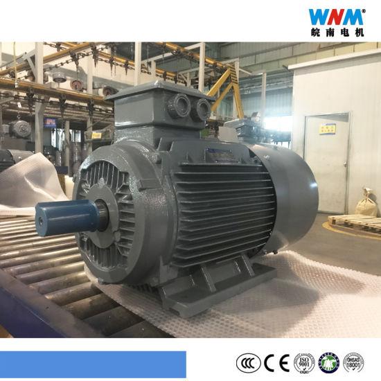 Variable Frequency VFD Control Three Phase AC Eletcric Motor Yxvf250 30kw 37kw 55kw Wnm Motor