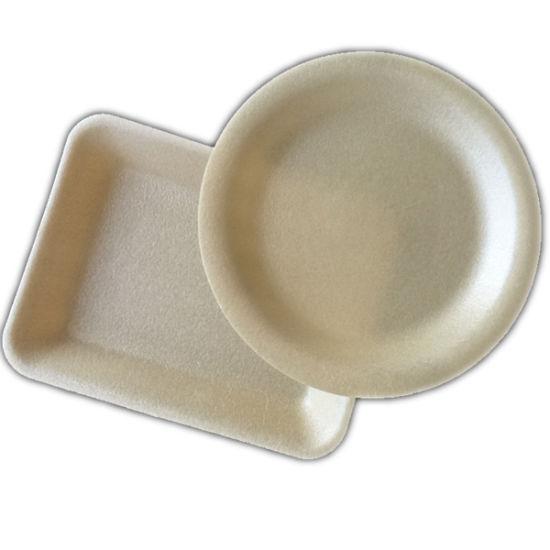 Fresh Food Packaging Biodegradable Meat Supermarket Vegetable Foam Tray