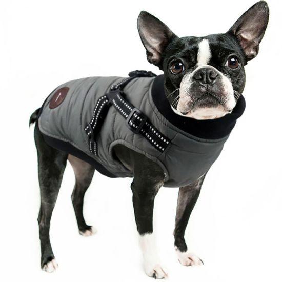 Pet Clothing Winter Warm Padding Dog Jacket