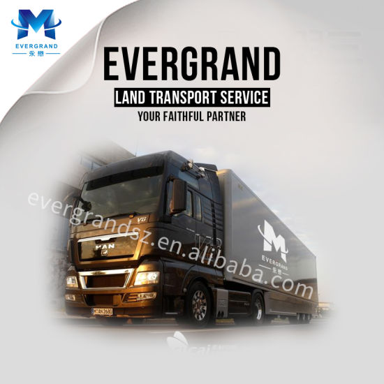 Shenzhen Evergrand International Freight Shipping Co , Ltd