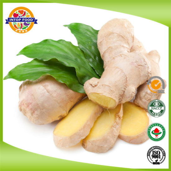 Fresh New Crop Ginger/Dried Ginger/Dry Ginger with Global Gap