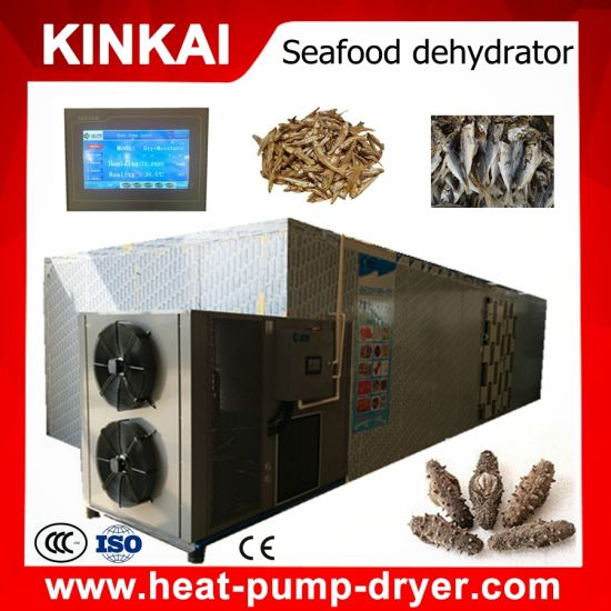 Economic Seaweed Dehydrator/ Seafood Dryer pictures & photos