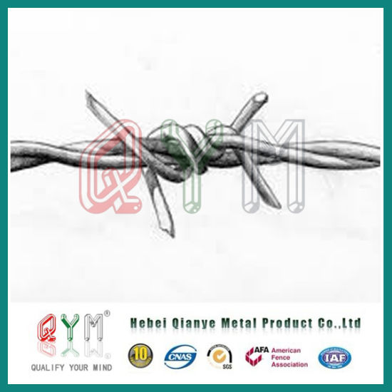China Hot Sale Military Barb Wire Fence Used Barbed Wire - China ...