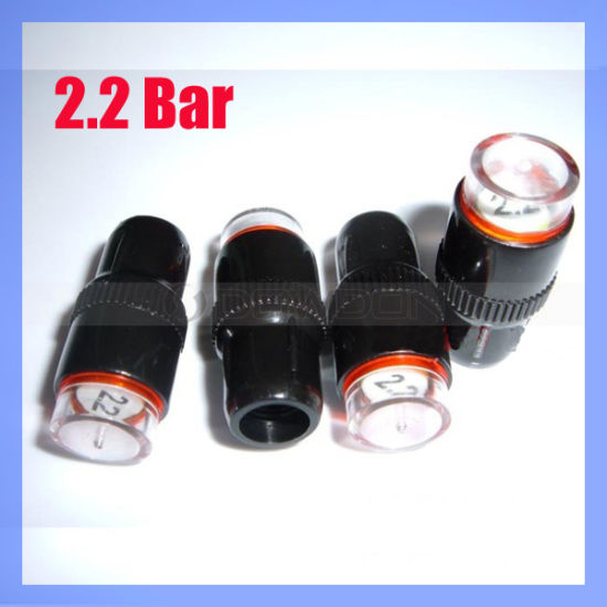 Auto Car 2.2 Bar Tire Pressure Gauge Valve Caps/Tire Pressure Indicator Cap (TIRE-02) pictures & photos